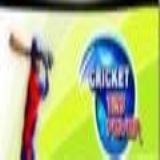 Dwonload cricket t20 fever HD Cell Phone Game